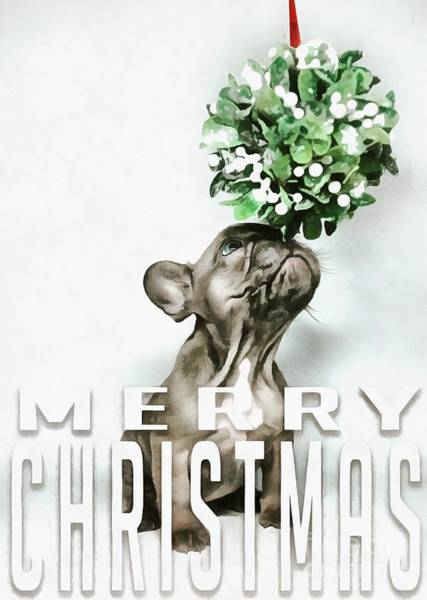 Wall Art - Digital Art - Merry Christmas Puppy Card by Edward Fielding