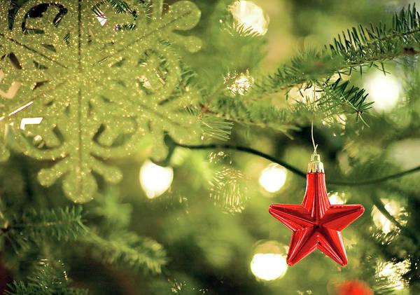 Wall Art - Photograph - Merry Christmas by Todd Klassy