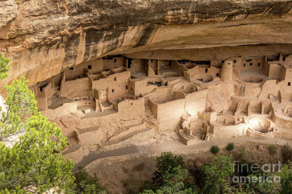 Photograph - Mesa Verde Ancestral Puebloan Cliff Dwellings #3 by Blake Webster