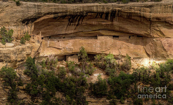 Photograph - Mesa Verde Ancestral Puebloan Cliff Dwellings by Blake Webster