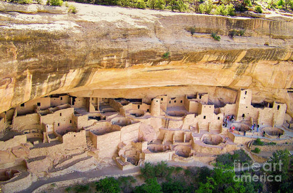 Wall Art - Photograph - Mesa Verde Cliff Palace by Suzanne Wilkinson
