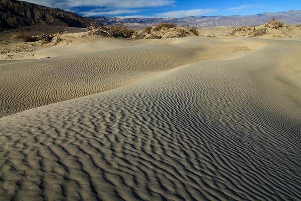 Photograph - Mesquite Flat Sand Dunes by Ed  Riche
