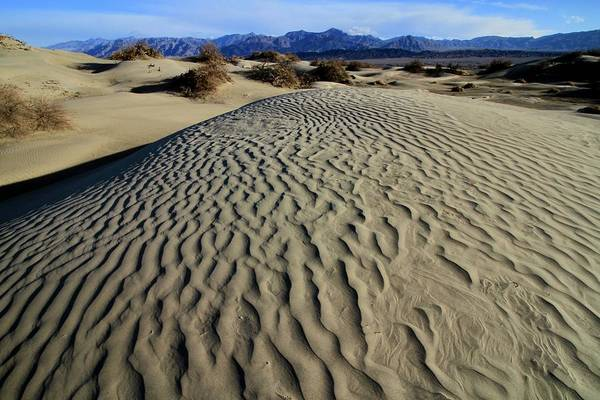 Photograph - Mesquite Flat Sand Dunes Grapevine Mountains by Ed  Riche