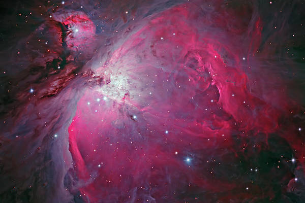Dust Photograph - Messier 42, The Orion Nebula by Bob Fera/stocktrek Images