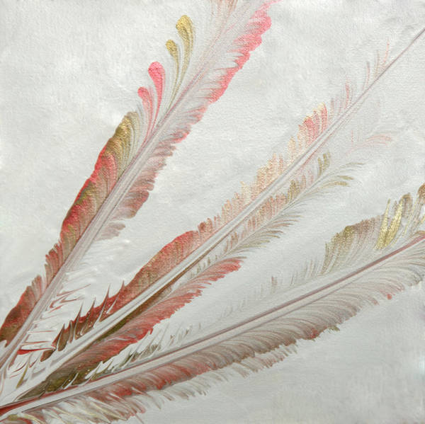 Mfa Wall Art - Photograph - Metalic Feathers by Iris Richardson