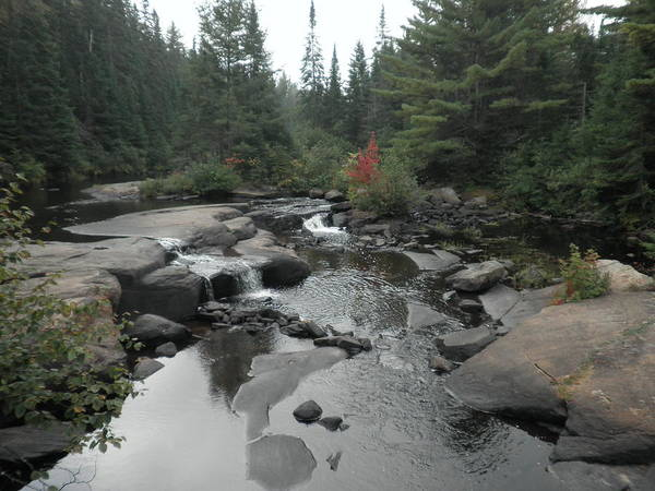 Madawaska Lake Photograph - Mew Lake Falls, Algonquin Provincal Park by Linda Stroud