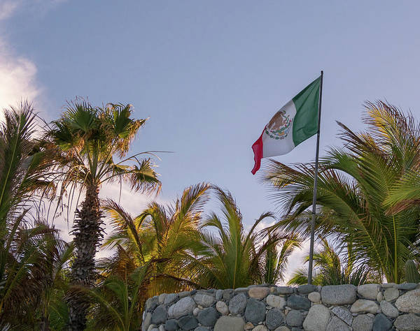 Wall Art - Photograph - Mexican Flag by Jean Noren