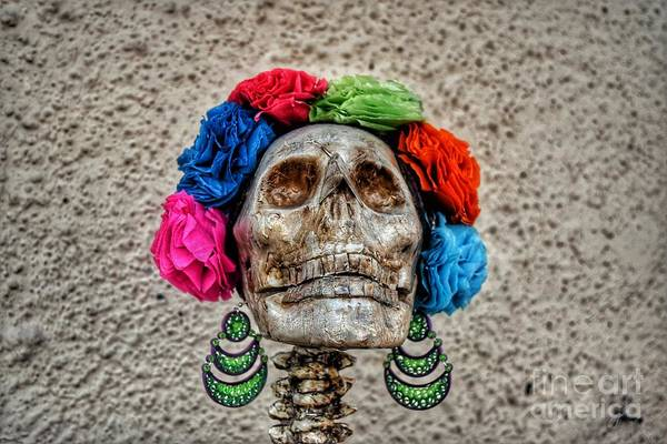 The Undead Photograph - Mexican Skull by Ian McDonald