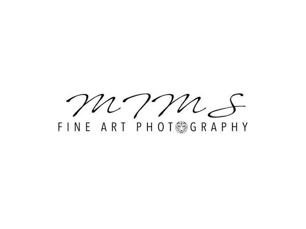 Photograph - MFA by JD Mims