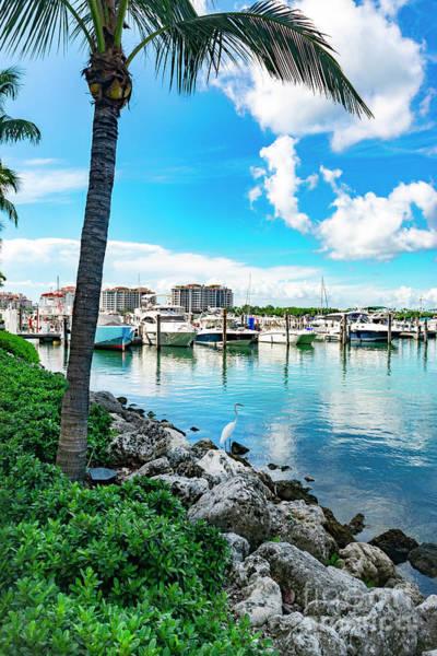 Photograph - Miami Beach Marina 85 by Carlos Diaz