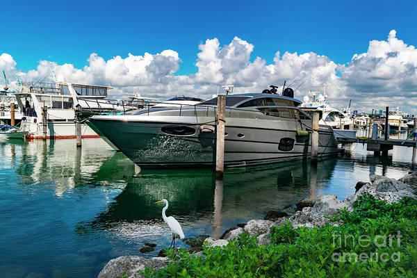 Photograph - Miami Beach Marina 88 by Carlos Diaz