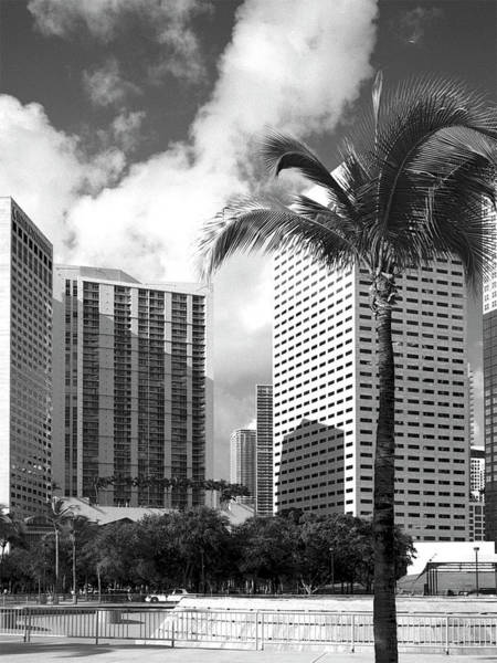 Photograph - Miami Downtown 071903 by Rudy Umans