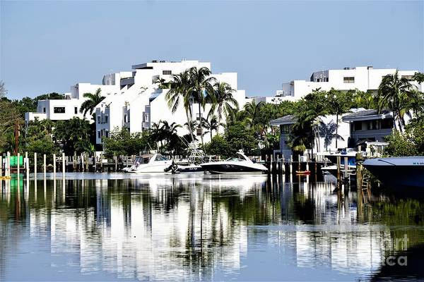 Photograph - Miami by Merle Grenz
