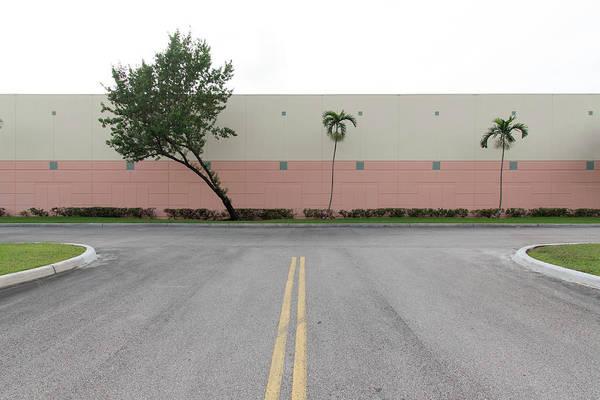 Photograph - Miami Topographics 3 by Stuart Allen