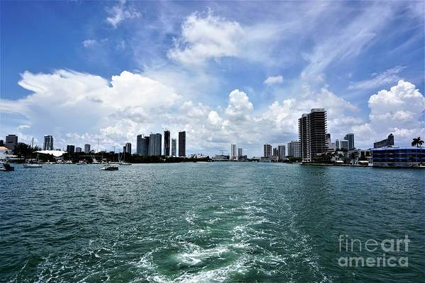 Photograph - Miami2 by Merle Grenz