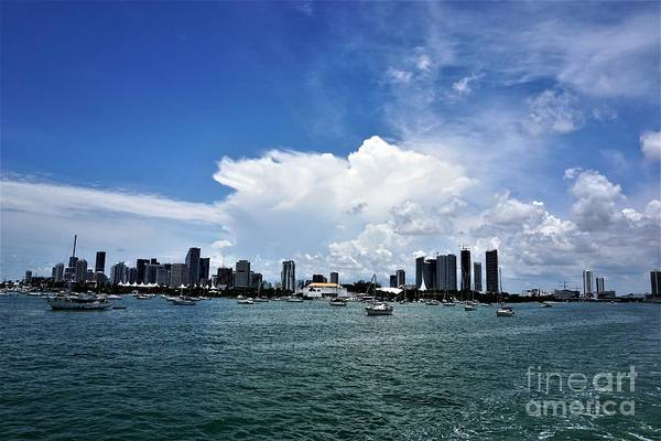 Photograph - Miami4 by Merle Grenz