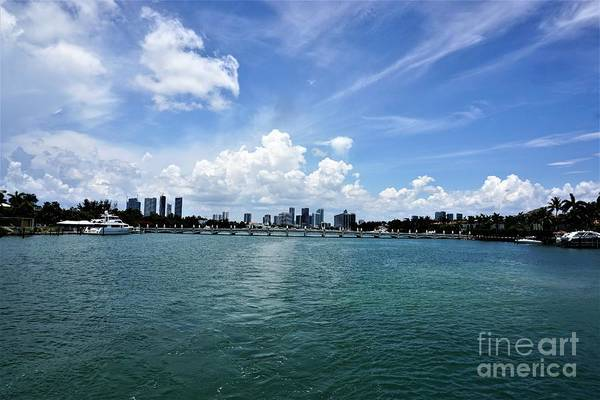 Photograph - Miami7 by Merle Grenz