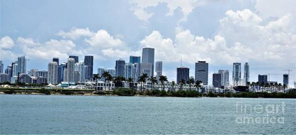 Photograph - Miami9 by Merle Grenz