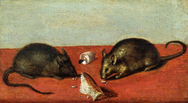 Wall Art - Painting - Mice, 1600 by Jacques de Gheyn II