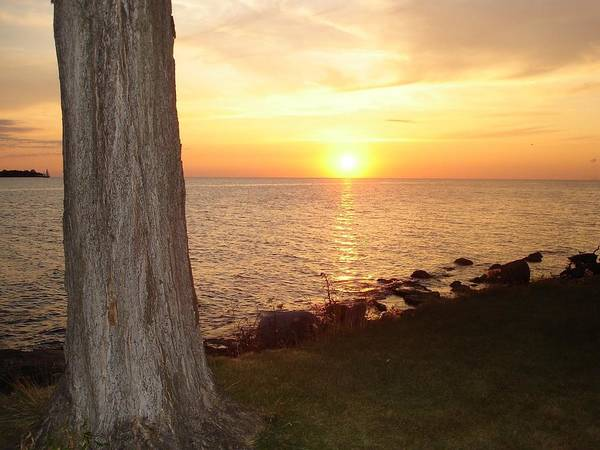 Middle Bass Island Photograph - Middle Bass Yellow Sunset by Monica Donaldson Stewart