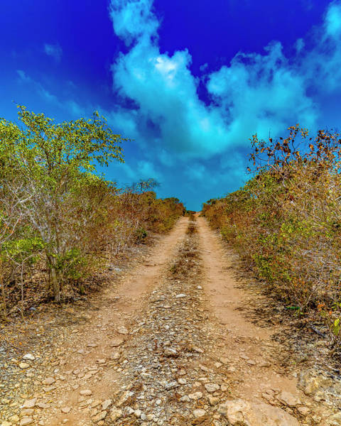 Middle Of Nowhere Photograph - Middle Caicos Rocky Road by Betsy Knapp