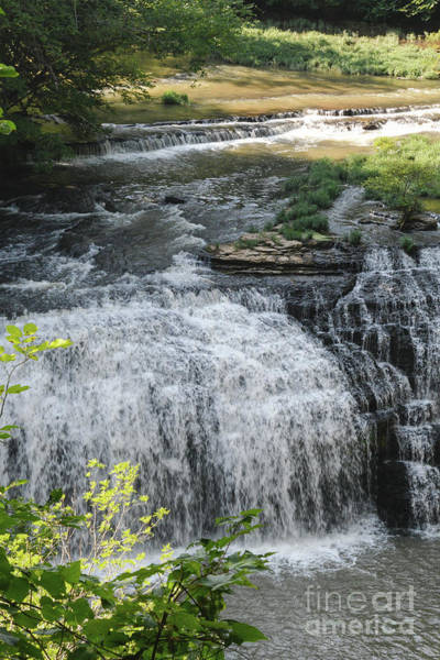 Photograph - Middle Falls 2 by Phil Perkins
