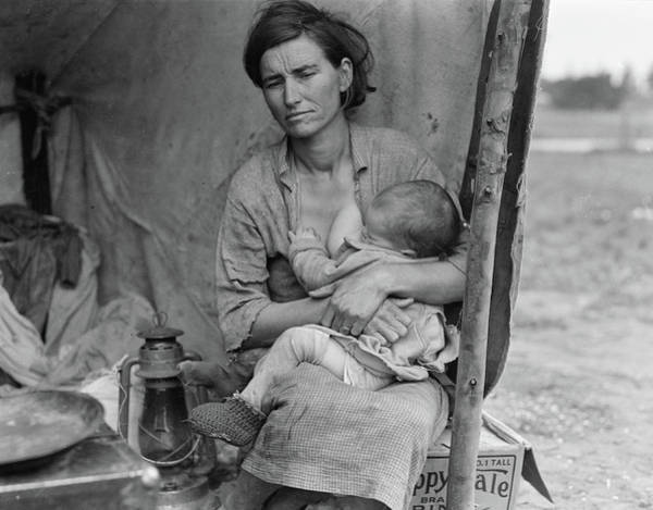 Wall Art - Photograph - Migrant Mother Breastfeeding, 1936 by Science Source