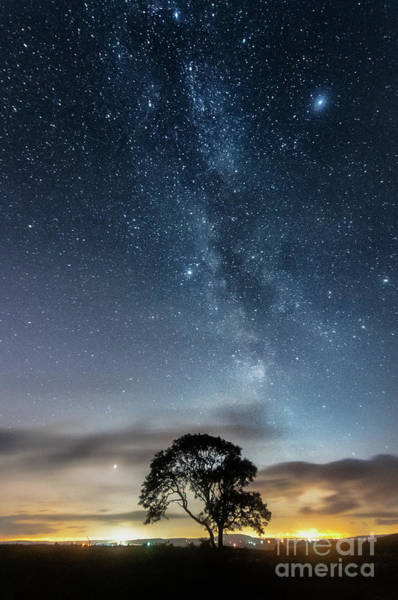Photograph - Milky Way And The Lonely Tree On The Limestone Pavement by Mariusz Talarek