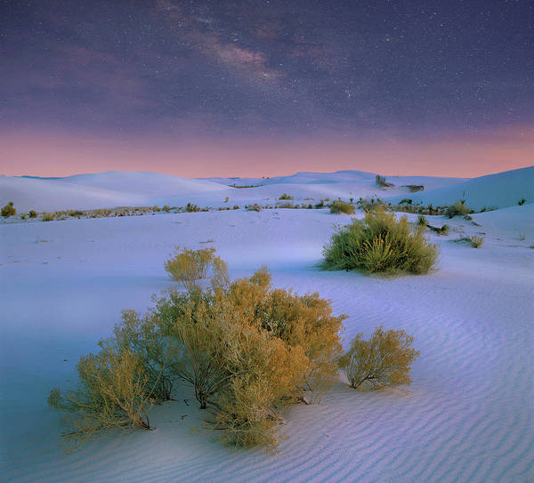 Photograph - Milky Way Over White Sands Nm, New by