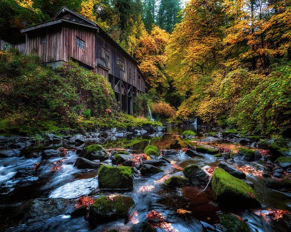 Photograph - Mill In The Fall by Michael Ash