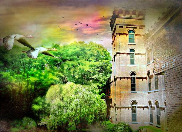 Wall Art - Photograph - Mill Tower by Diana Angstadt
