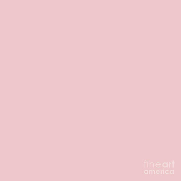 Digital Art - Millennial Pink Blush Rose Quartz by Sharon Mau