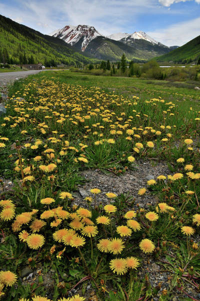 Photograph - Million Dollar Highway In Colorado by Ray Mathis