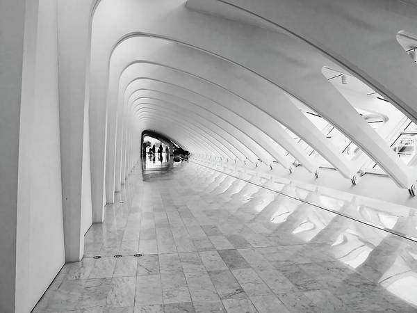 Photograph - Milwaukee Art Museum 3 by Steven Ralser