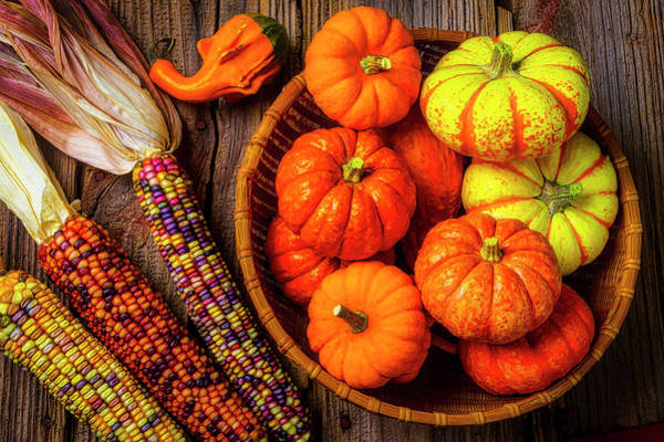 Wall Art - Photograph - Mimi Pumpkins In Wicker Bowl by Garry Gay