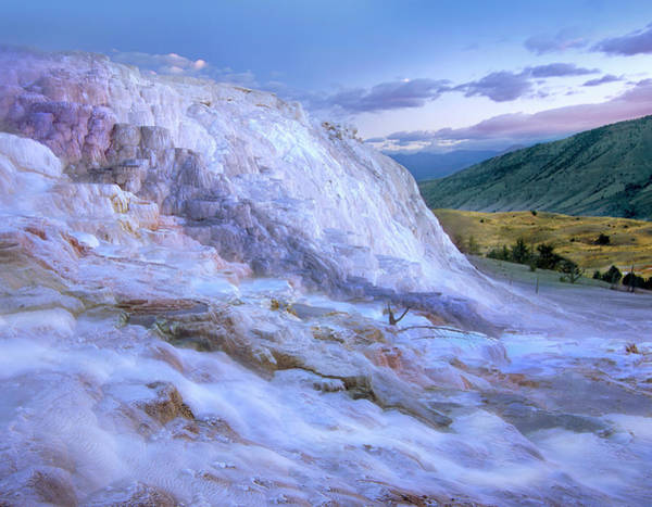 Photograph - Minerva Terrace Hot Spring, Yellowstone by Tim Fitzharris