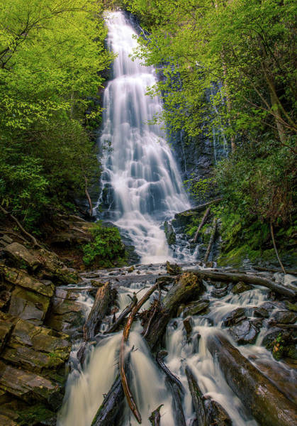 Photograph - Mingo Falls Vertical by Dan Sproul