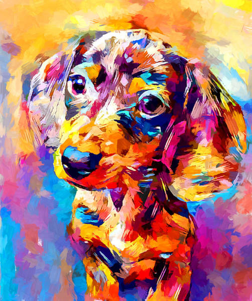 Wall Art - Painting - Mini Dachshund by Chris Butler