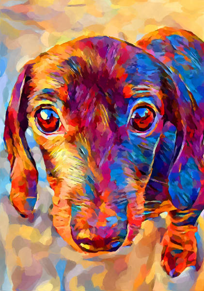 Wall Art - Painting - Miniature Dachshund 3 by Chris Butler