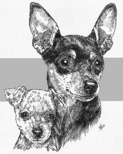 Drawing - Miniature Pinscher And Pup by Barbara Keith