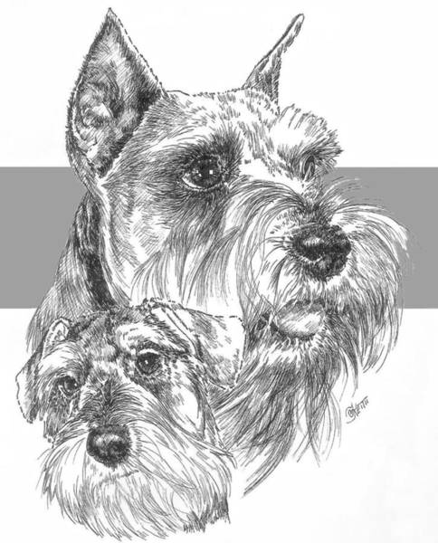 Drawing - Miniature Schnauzer And Pup by Barbara Keith