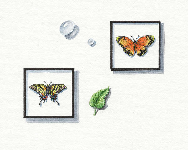 Wall Art - Painting - Miniature Watercolor Butterfly Collection  by Irina Sztukowski