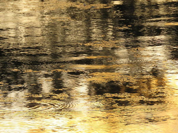 Photograph - Minnamoolka Sunset Gold 1 by Joan Stratton