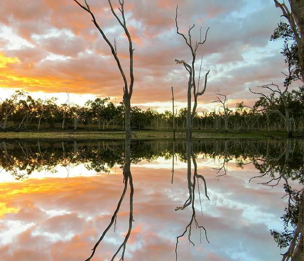 Photograph - Minnamoolka Sunset Reflection 3 by Joan Stratton