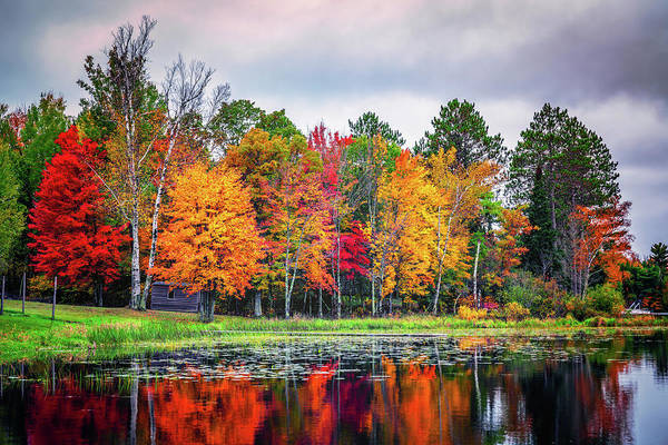 Photograph - Minnesota Autumn by Framing Places