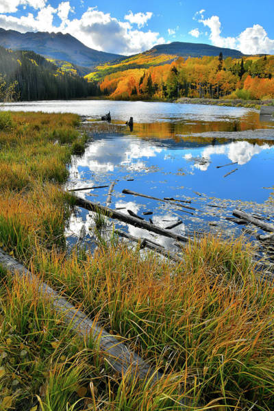 Photograph - Mirror Image Of Fall Colors In Woods Lake by Ray Mathis