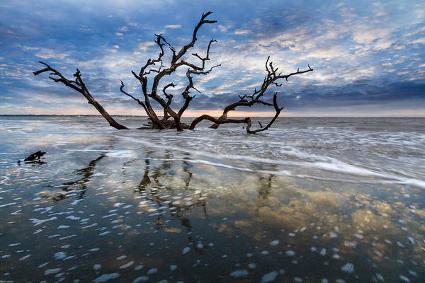 Photograph - Mirrored In The Tide by Debra and Dave Vanderlaan