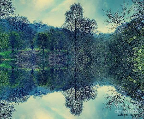 Wall Art - Mixed Media - Mirrored Nature by Leanne Seymour
