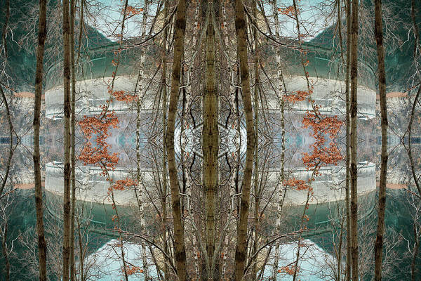 Kaleidoscopes Photograph - Mirrored Trees In Front Of Lake By by Silvia Otte