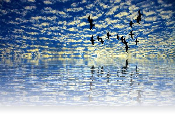 Sea View Digital Art - Mirroring Sky by ArtMarketJapan